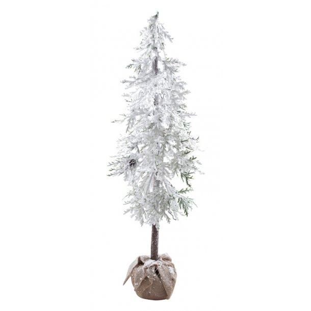 Cedertræ med klump og Sne - Højde 148 cm