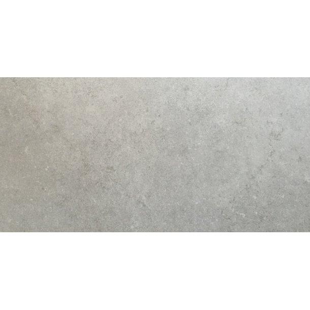 Daisen Light Grey 60x60