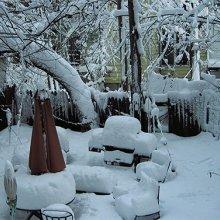 Sådan gør du din have klar til vinter