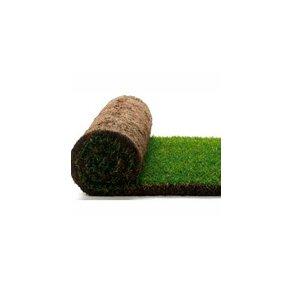 Kunstgræs og Rullegræs